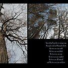 Branches by DreamCatcher/ Kyrah Barbette L Hale
