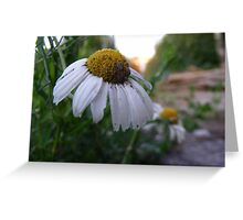 Flower Rising Greeting Card