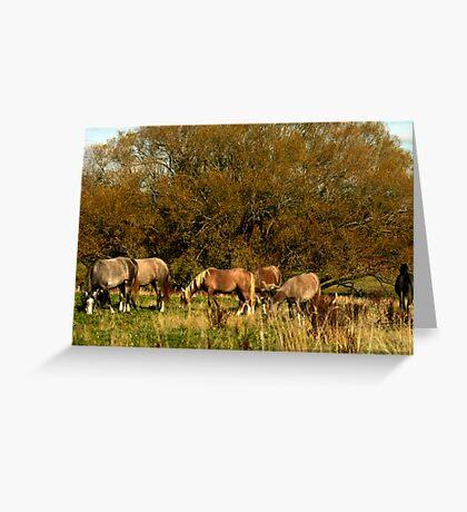 Farm Friends  Greeting Card