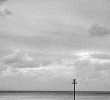 Tenby Pembrokeshire Seascape by Steve Purnell
