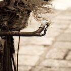Old bike by mamuphoto