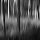 Trees in the Darkness by Aase
