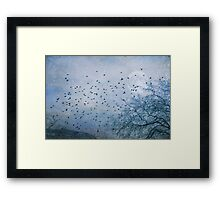 HURRY HOME Framed Print