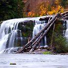 A River Runs Through It by TeresaB