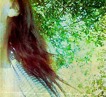 Secrets in the trees by Anne  McGinn