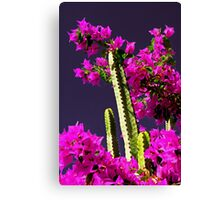 Cactus & flowers  Canvas Print