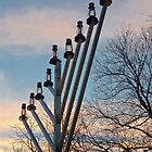 Chanukkah Sunset by Kellypix