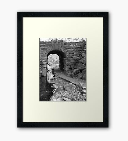"""By """"The Pool"""" Central Park Framed Print"""