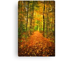 Red Carpet Canvas Print
