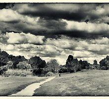 Navan Park Path by Penny Lewis