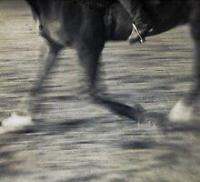 Horse & Rider I by Adriana Glackin