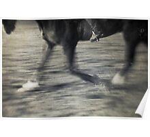 Horse & Rider I Poster