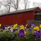 Covered Bridge in Spring by Mark Van Scyoc