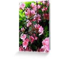 pencil effect Greeting Card