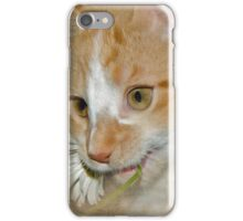 Don't Eat The Daisy (iPhone Case) iPhone Case/Skin