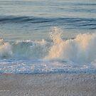 Atlantic Ocean Beach | Fire Island, New York by © Sophie W. Smith