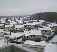 Winter in Migennes - Jan 2010 by Caroline  SAUVAGEOT