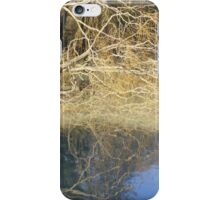Photograph at the Mill Pond iPhone Case/Skin