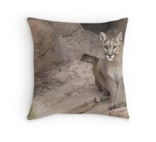 Curious Kitty Throw Pillow