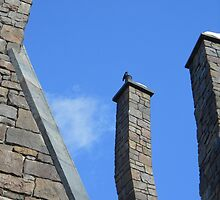 Chimney Sweep by Ironwings