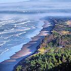 Oregon's Pacific Coastline  by Don Siebel