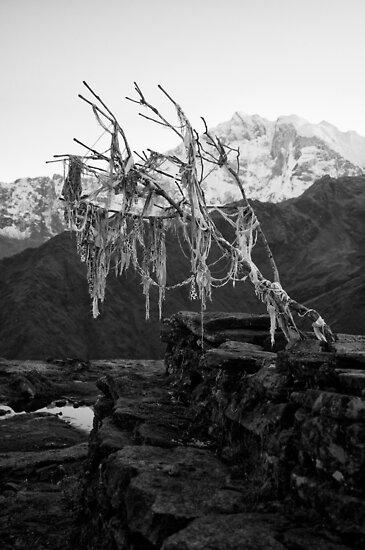 Dhaulagiri Range, Himalayas, Nepal by John Callaway