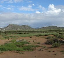 Samburu land scape 2 by sharkyvin