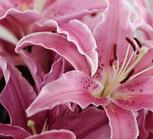 Bunch of Lillies by yolanda