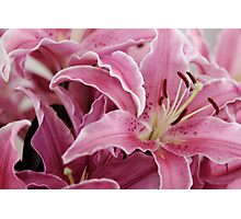 Bunch of Lillies Photographic Print