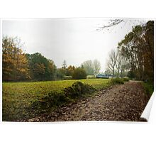 Path along the freshly mowed grasslands  Poster