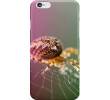 Spidery  iPhone Case/Skin