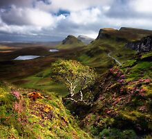 Along The Ridge by Chris Miles