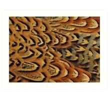Pheasant Art Print