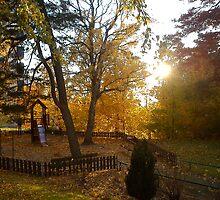 Autumn Walk by rhulth