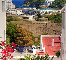 View from Pueblo Espárragos by Tom Gomez