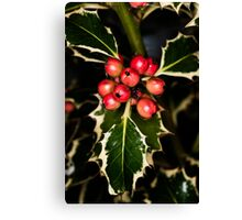 Holly With Berries Canvas Print
