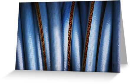 Realistic Abstract (garden hose) by Laurie Minor