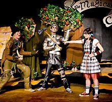 Wizard of Oz-15 by ScaredylionFoto