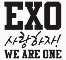 'EXO Saranghaja! We Are One' by PaolaAzeneth