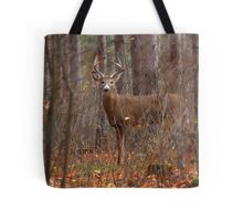 In the Stillness of the Woods - White-tailed Deer Tote Bag