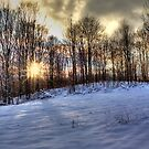 One Winter Evening by Megan Noble