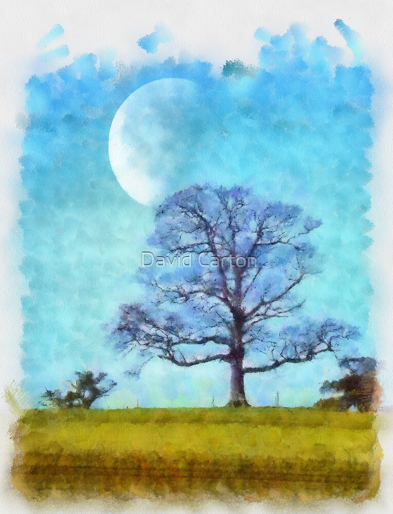 Moon and Tree by buttonpresser