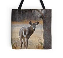 Gotcha! - White-tailed Deer Tote Bag