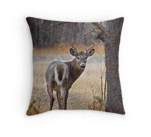 Gotcha! - White-tailed Deer Throw Pillow