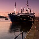 Moorings by Chris Cardwell