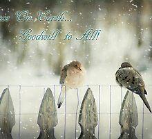 Mourning Dove Christmas by KBritt