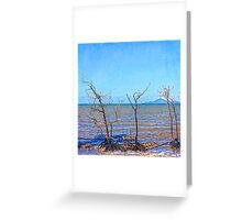 Dead mangroves after a cyclone Greeting Card
