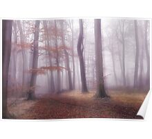 Foggy Woodlands Poster