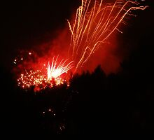 Crazy Firework 2011 by Luketxx