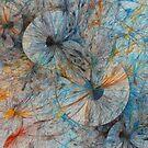 Explosionisms by Benedikt Amrhein